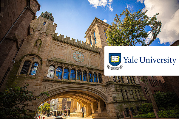 Where Is Yale University Located